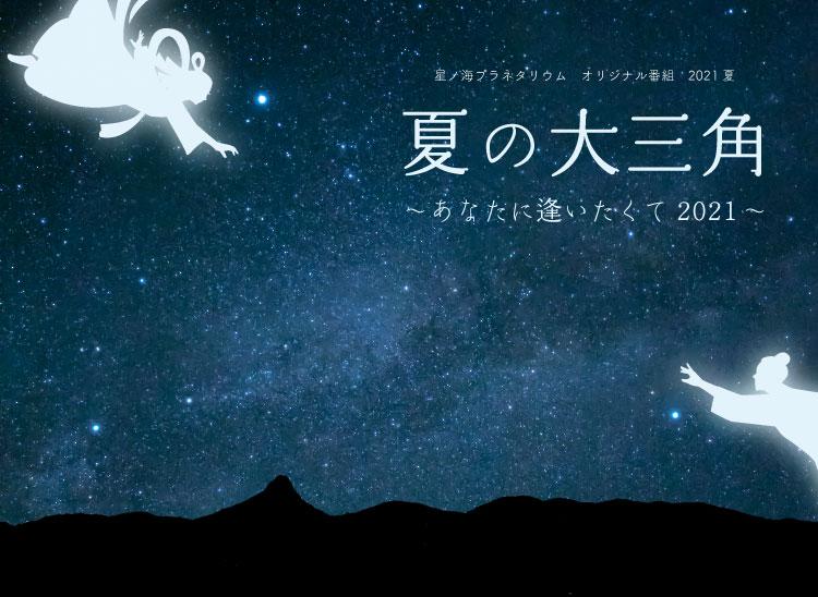 オリジナル番組<br>夏の大三角~あなたに逢いたくて2021~
